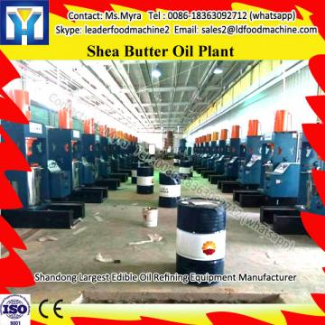 High Performance French Fries Making Plant