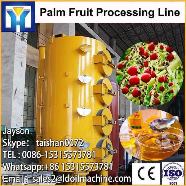 10-500TPD small scale palm oil refining machinery #1 image