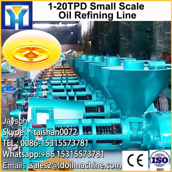 100TPD peanut oil production line in Russia #1 image