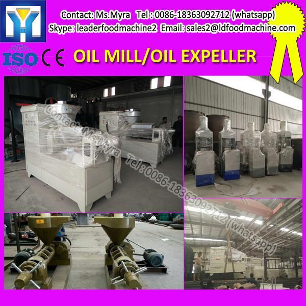 Moringa Seed Oil Expeller Machine #1 image
