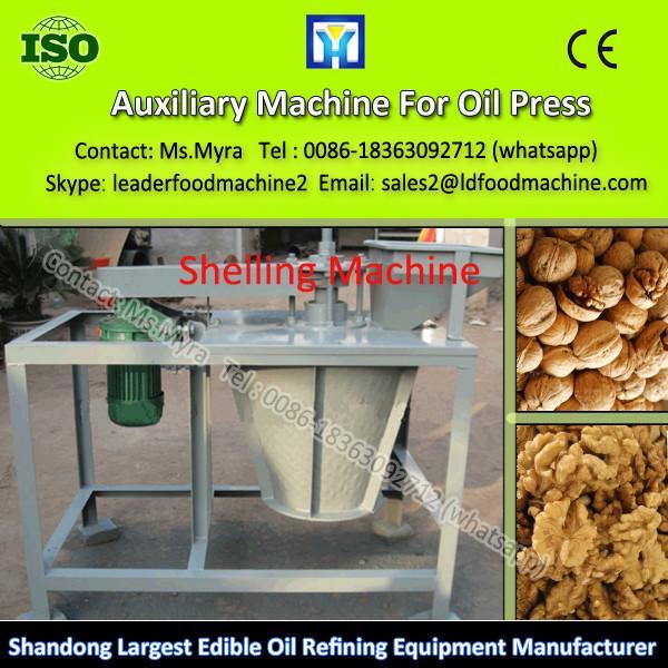 QIE 2013 NEW High Quality Chestnut Roaster Machine #1 image