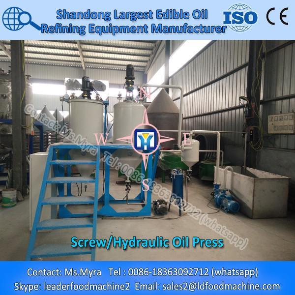 Screw sunflower oil press machine #1 image
