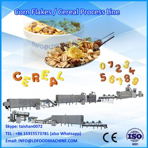 Extruded corn flakes processing line #1 image