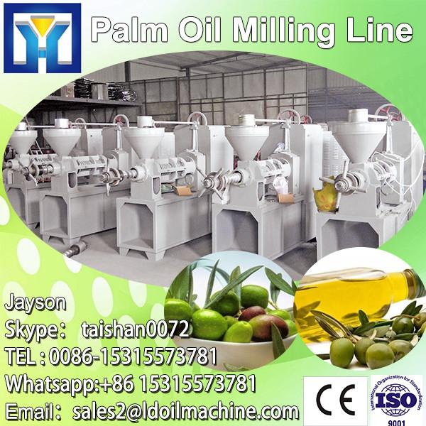 Nigeria FFB palm oil production processing machine factory #1 image
