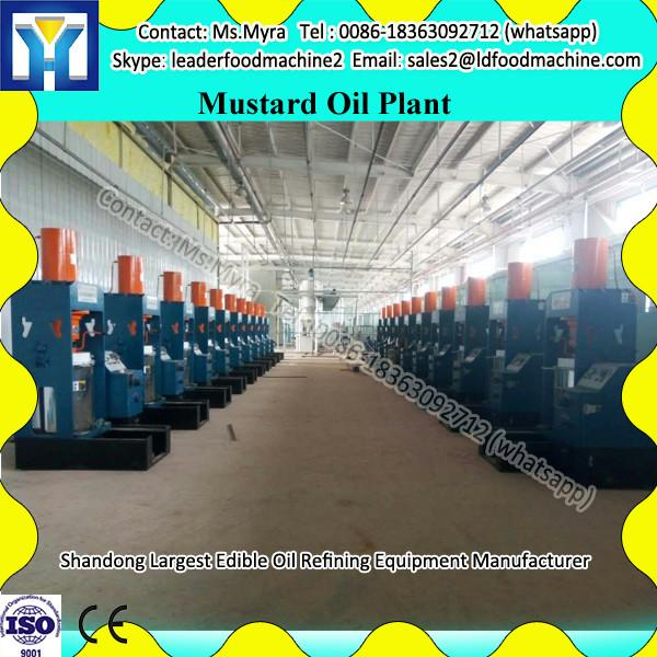 batch type high quality tea leaf drying machinery on sale #1 image