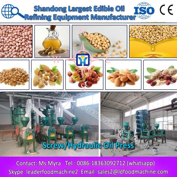 Hot selling seed extraction machine/screw presser #1 image